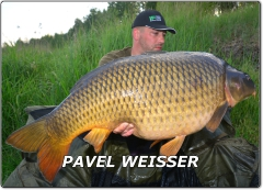 Jdi na profil Pavel Weisser